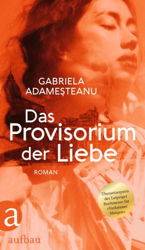 Gabriela Adameşteanu: Das Provisorium der Liebe