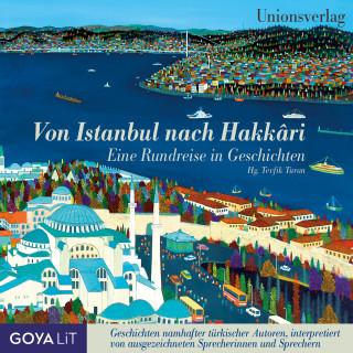 Yaşar Kemal, Erkan Karagöz, Ferit Edgü, Orhan Duru, Aziz Nesin: Von Istanbul nach Hakkari.