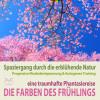 Franziska Diesmann, Torsten Abrolat: Die Farben des Frühlings - Spaziergang durch die erblühende Natur, eine traumhafte Phantasiereise mit der P&A Methode