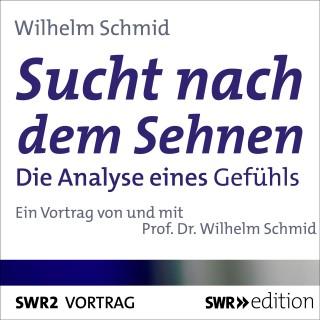 Wilhelm Schmid: Sucht nach dem Sehnen