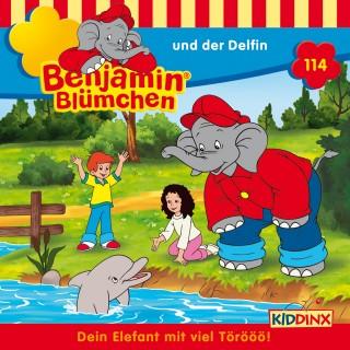 Vincent Andreas: Benjamin Blümchen - … und der Delfin