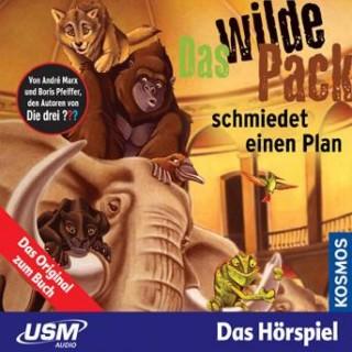 André Marx, Boris Pfeiffer: Das wilde Pack 02: Das wilde Pack schmiedet einen Plan