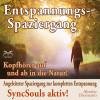 Franziska Diesmann, Torsten Abrolat: Entspannungsspaziergang: Angeleiteter Spaziergang zur kompletten Entspannung – SyncSouls aktiv