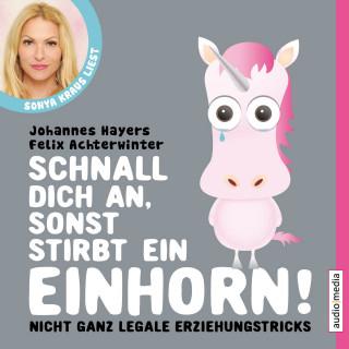 Johannes Hayers, Felix Achterwinter: Schnall dich an, sonst stirbt ein Einhorn