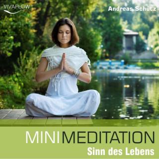 Andreas Schütz: Mini Meditation - Sinn des Lebens