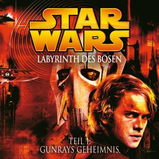 James Luceno: Labyrinth des Bösen - Teil 1: Gunrays Geheimnis