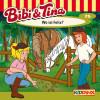 Markus Dietrich: Bibi & Tina - Folge 75: Wo ist Felix?