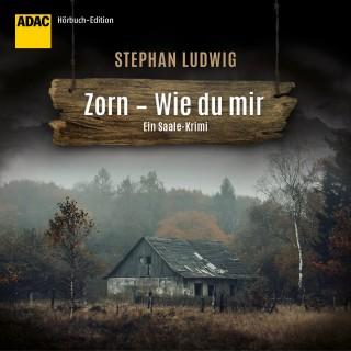 Stephan Ludwig: Zorn - Wie du mir