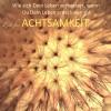 Patrick Lynen, Dorothee Krüger: Zeit für Achtsamkeit (Gelassenheit, Entspannung, zur Ruhe kommen, Innere Balance finden)