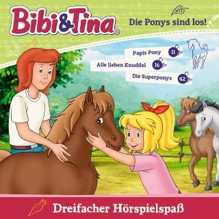 Ulf Thiem: Bibi & Tina - Die Ponys sind los Folge 11 + 16 + 42