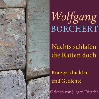 Wolfgang Borchert: Wolfgang Borchert: Nachts schlafen die Ratten doch