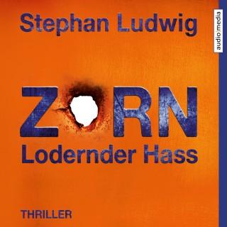 Stephan Ludwig: Zorn 7 – Lodernder Hass