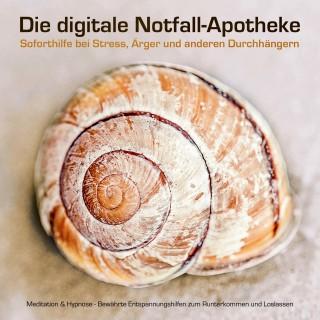 Patrick Lynen: Die digitale Notfall-Apotheke: Soforthilfe bei Stress, Ärger und anderen Durchhängern