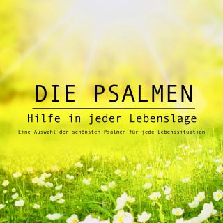 Ingo Hoppe: Die Psalmen: Hilfe in jeder Lebenslage