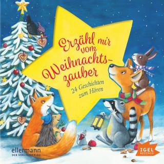 Henriette Wich, Maja von Vogel, Anne Ameling: Erzähl mir vom Weihnachtszauber