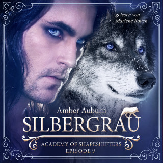 Amber Auburn: Silbergrau, Episode 9 - Fantasy-Serie