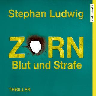 Stephan Ludwig: Zorn 8 – Blut und Strafe