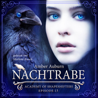 Amber Auburn: Nachtrabe, Episode 13 - Fantasy-Serie