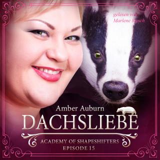 Amber Auburn: Dachsliebe, Episode 15 - Fantasy-Serie
