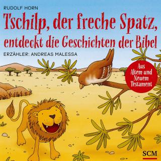 Rudolf Horn: Tschilp, der freche Spatz, entdeckt die Geschichten der Bibel