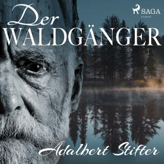 Adalbert Stifter: Der Waldgänger