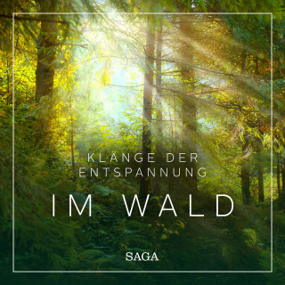 Rasmus Broe: Klänge der Entspannung - Im Wald