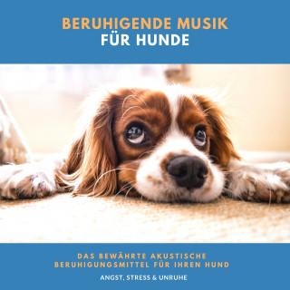 Neil Aniston: Beruhigende Musik für Hunde