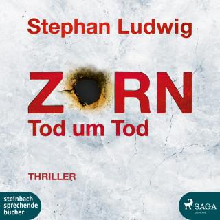 Stephan Ludwig: Zorn