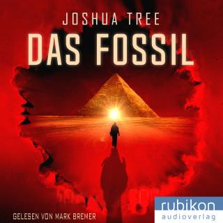 Joshua Tree: Das Fossil