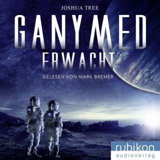 Joshua Tree: Ganymed erwacht