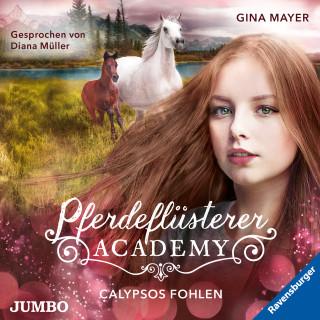 Gina Mayer: Pferdeflüsterer-Academy. Calypsos Fohlen