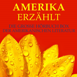 Mark Twain, Edgar Allan Poe, Jack London: Amerika erzählt