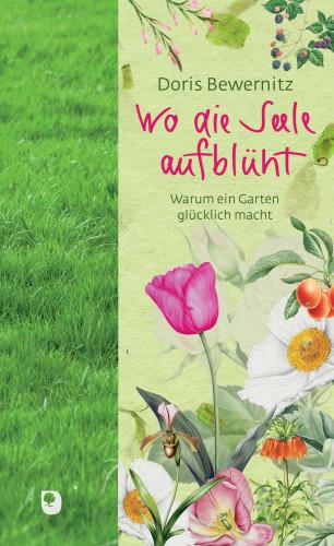 Doris Bewernitz: Wo die Seele aufblüht