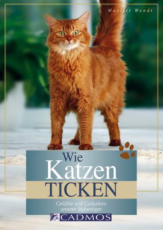Marlitt Wendt: Wie Katzen ticken