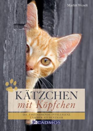 Marlitt Wendt: Kätzchen mit Köpfchen