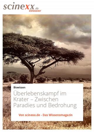 Dieter Lohmann: Überlebenskampf im Krater