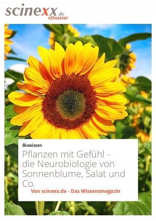 Marcus Anhäuser: Pflanzen mit Gefühl