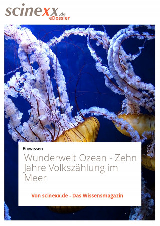 Nadja Podbregar: Wunderwelt Ozean
