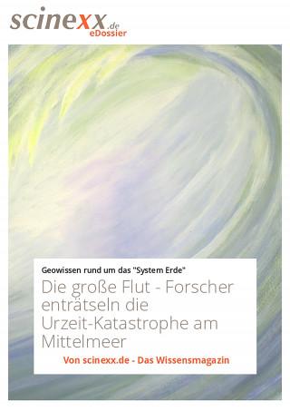 Nadja Podbregar: Die große Flut