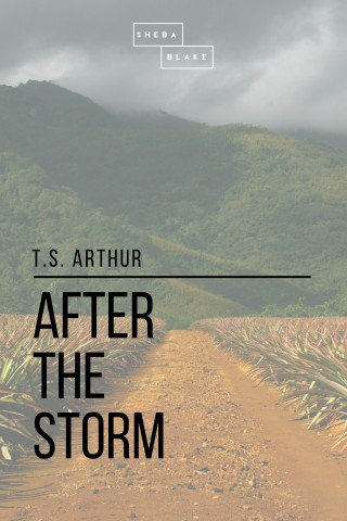 T. S. Arthur, Sheba Blake: After the Storm