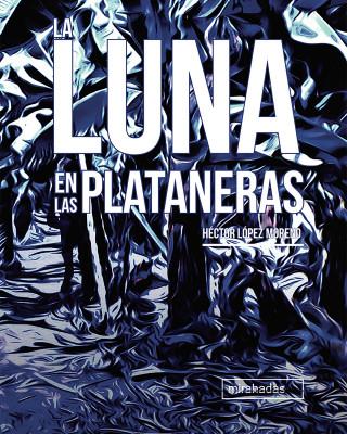 Héctor López Moreno: La luna en las plataneras