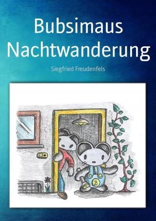 Siegfried Freudenfels: Bubsimaus Nachtwanderung