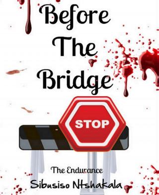 Sibusiso Ntshakala: Before The Bridge