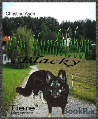 Christine Asen: Blacky - Ein Hundeleben