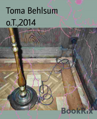 Toma Behlsum: o.T.,2014