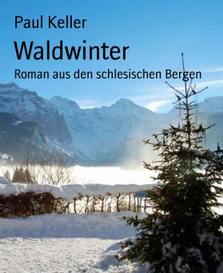 Paul Keller: Waldwinter