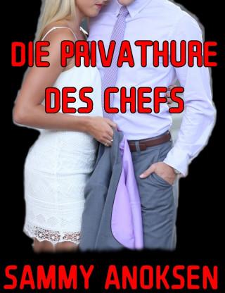 Sammy Anoksen: Die Privathure des Chefs