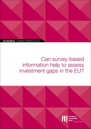 EIB Working Papers 2019/04 - Can survey-based information help to assess investment gaps in the EU?