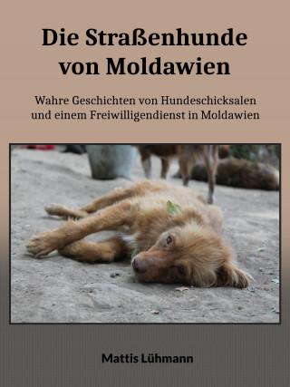 Mattis Lühmann: Die Straßenhunde von Moldawien