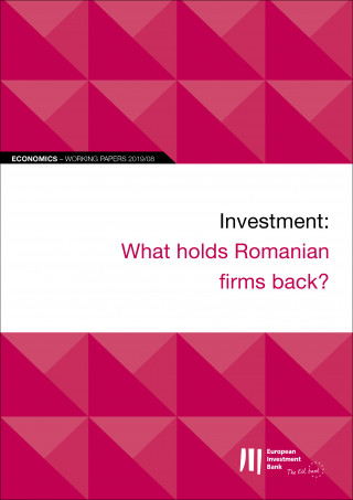 EIB Working Papers 2019/08 - Investment: What holds Romanian firms back?